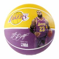 LeBron James Los Angeles Lakers Player NBA Basketball