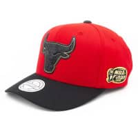Chicago Bulls 1996 NBA Finals 110 FlexFit Snapback NBA Cap