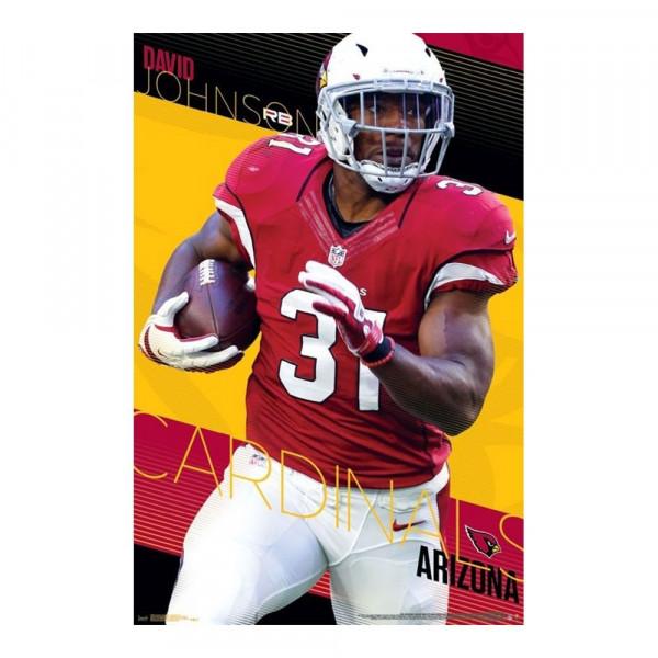 Arizona Cardinals David Johnson Superstar NFL Poster