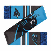 Carolina Panthers Colorblock Big Logo NFL Schal
