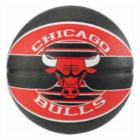 Chicago Bulls Team Logo NBA Basketball