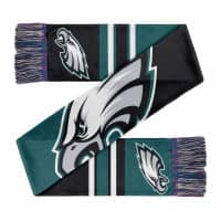 Philadelphia Eagles Colorblock Big Logo NFL Schal